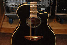 Acoustic & Electro-Acoustic Guitars